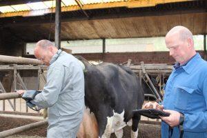 Passchyn benadrukt uitkomst van bedrijf is resultaat van een koe