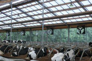 ABBIFAN-Ventilatoren voor melkveehouderij