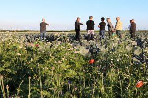 Team Agro NL: Ambtenaren gaan de boer op