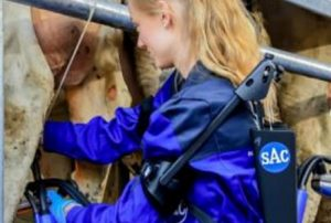 SAC Ergonomisch Melken – Optimaal voor de boer en de koe