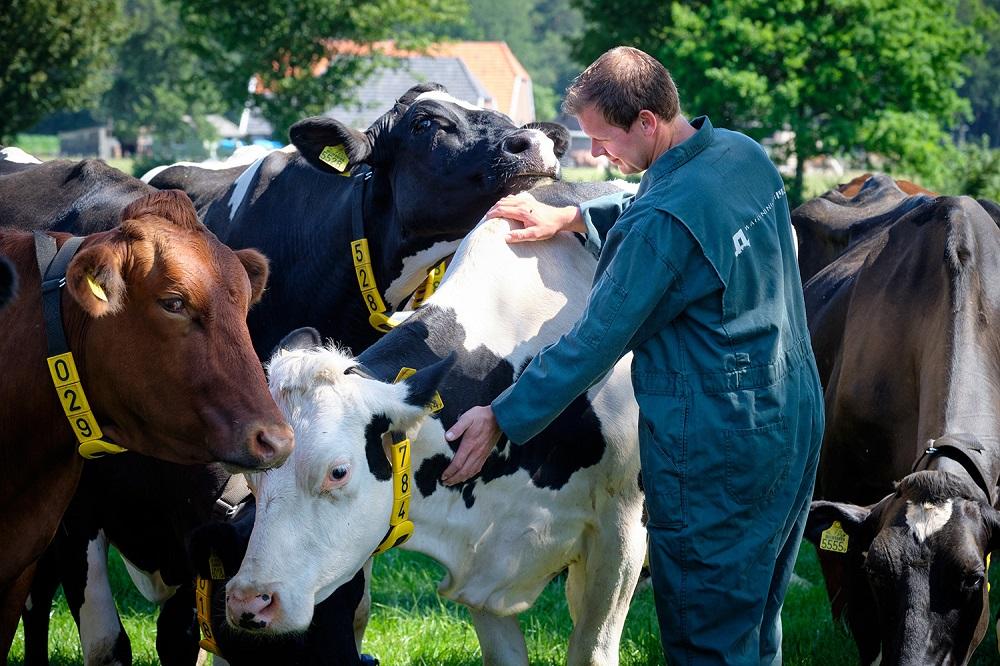 Wetenschap en boeren slaan handen ineen rond De Marke