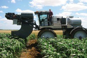 Gezonde, stevige maisplanten geven meer oogstzekerheid