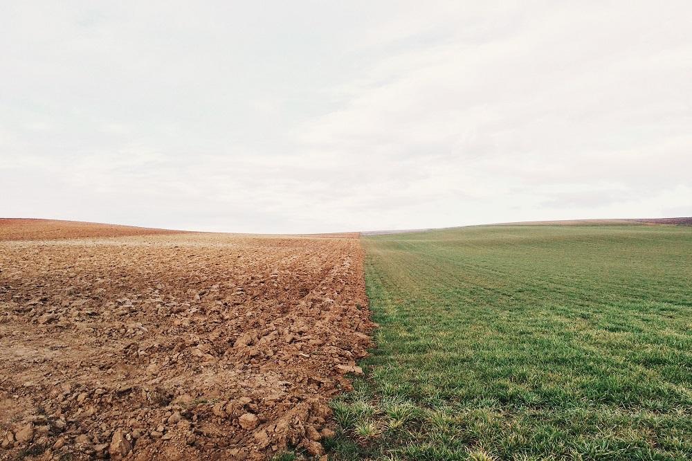 Nieuwe inzichten over effect van digestaat op de bodem