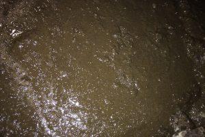 Inspectie SZW richt zich op veiligheidsrisico's bij het werken met mest