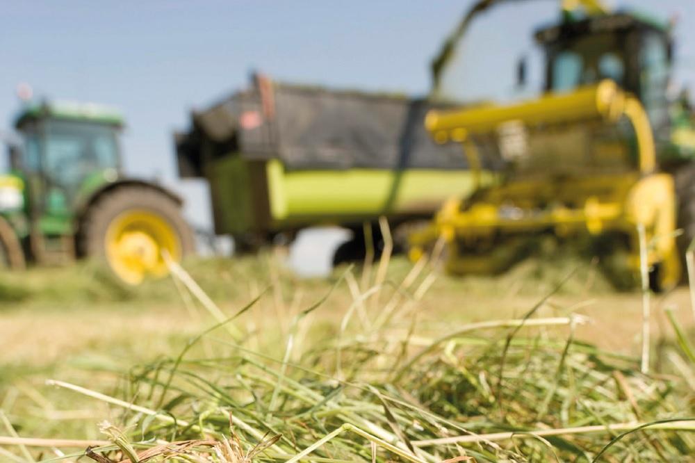Focus op graskuiladditieven: Effectieve inkuilmiddelen afgewogen ingezet