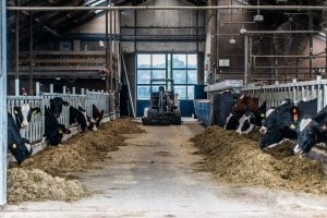 Veehouderijcomplex afhankelijk van eisen herkomst veevoer