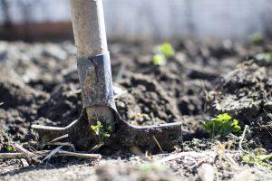 Schoner water en meer biodiversiteit door beter bodembeheer