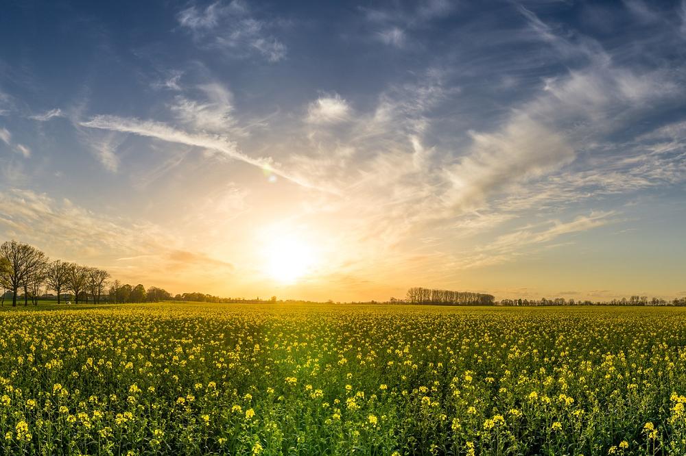 Boeren komen met oplossingen voor gevolgen extreem weer