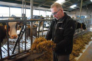 Drentse melkveehouder meer 'vakman' dankzij voer- en mengrobot Vector