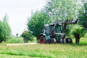 Grasgroei maaisnede nog steeds hoog
