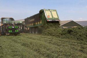 Voorjaarskuilen tonen uitdaging in conservering door laag droge stof gehalte