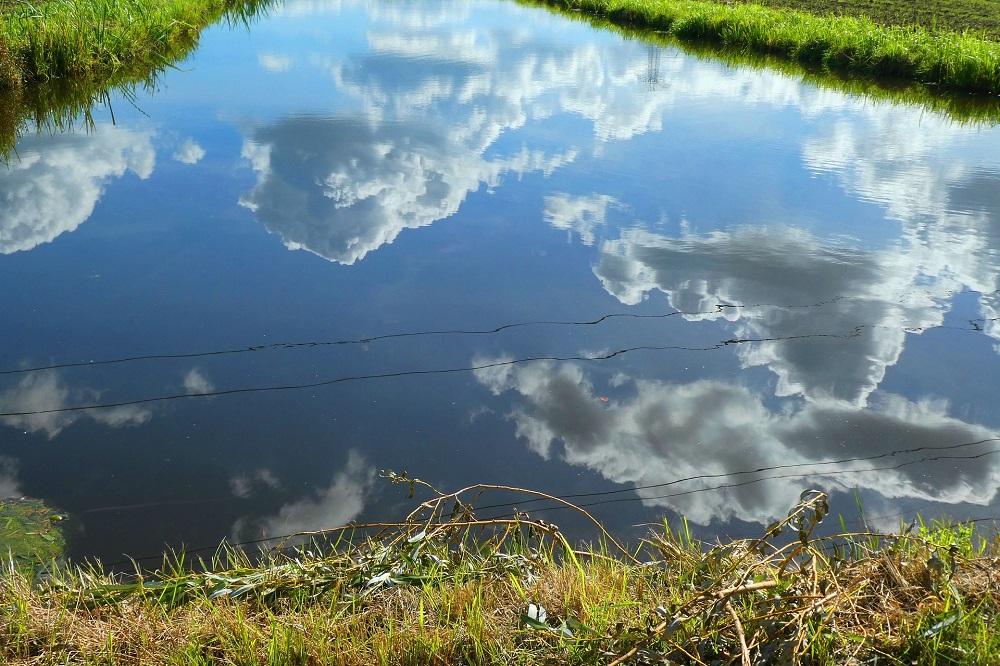 Wat is het toekomstperspectief van de Hoogwaterboerderij?