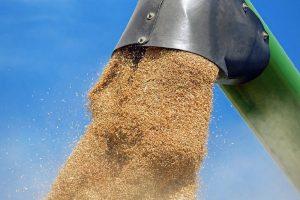 Tarwe opnieuw duurder door weerproblemen, sojamarkt onzeker