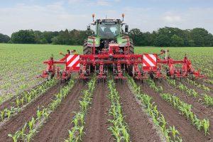 De dubbele rij schoon: Schoffeltechniek Steketee in DeltaRow-maïs