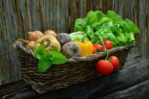 Groei areaal biodynamische landbouw zet door