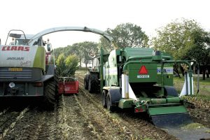 Behoud €300 aan zetmeel per hectare met Pioneer inoculant 11A44
