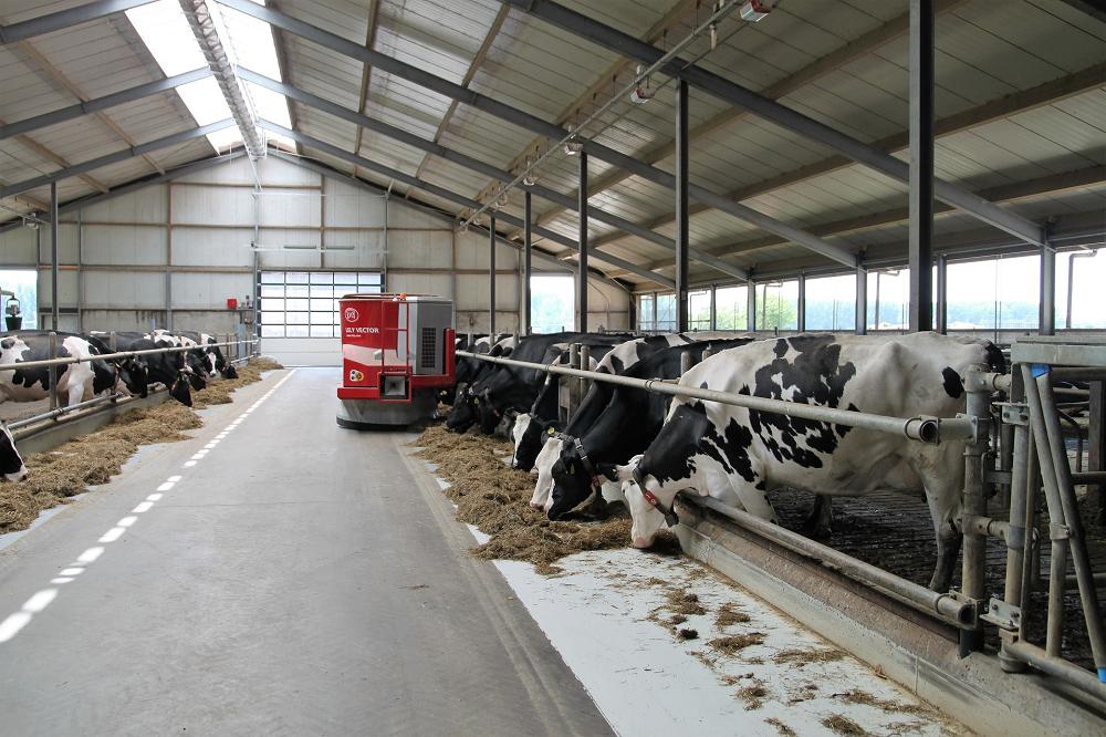 Melkveehouderij: Elk land heeft uitdagingen met verdienmodellen